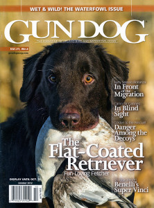 Cover Photo:  The Flat-Coated Retriever by Mark Atwater